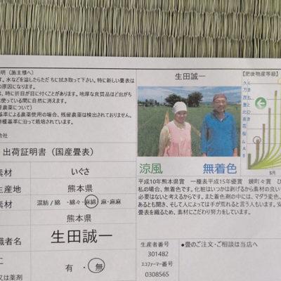 イグサ農家河野さん熊本八代